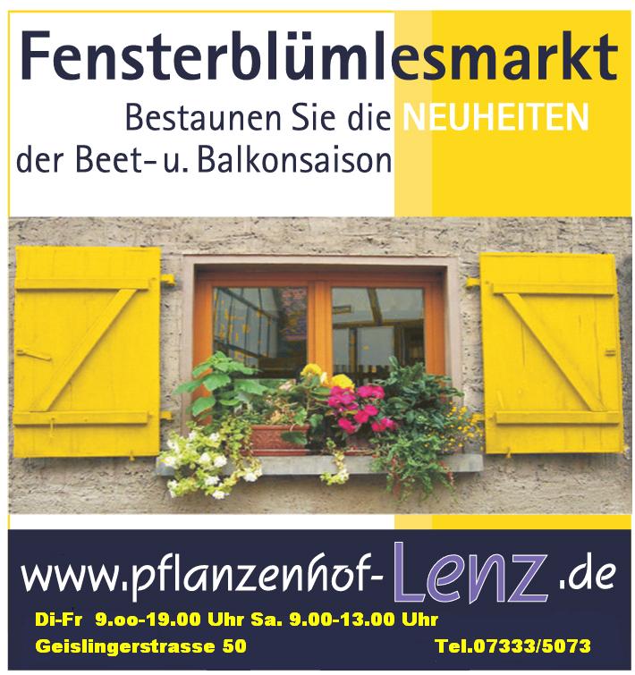 Fensterblümlesmarkt 2019